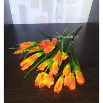Крокусы (оранжевый)