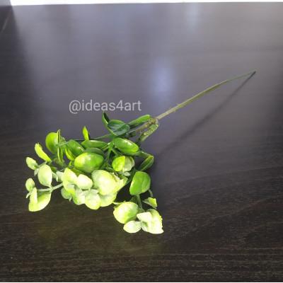Эвкалипт (зелёный)